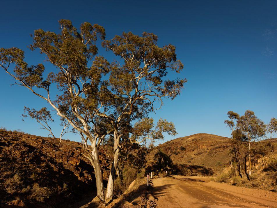 Südaustralien: Wecke deine Abenteuerlust im Outback!