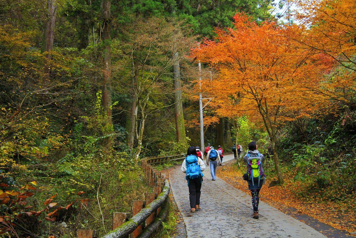 Foto von Wanderern, die auf einem Fußweg zum Mount Takao laufen
