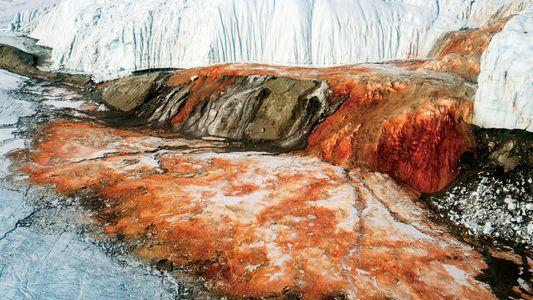 Der mysteriöse blutige Wasserfall der Antarktis