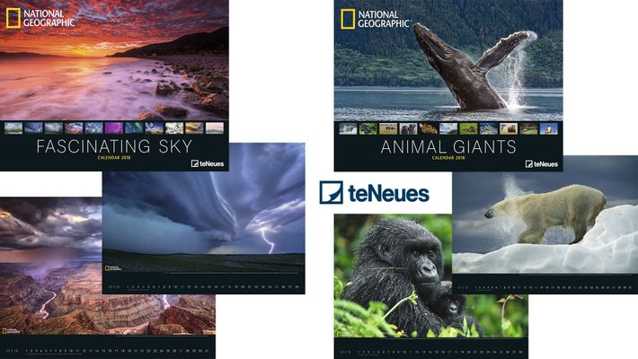 "Kalender von teNeues: ""Animal Giants"" oder ""Fascinating Sky"""