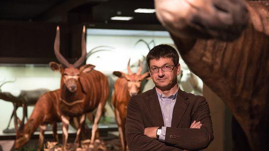 Der Evolutionsbiologe Matthias Glaubrecht im Zoologischen Museum des Hamburger Centrums für Naturkunde (CeNak).