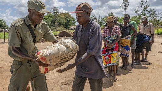 Galerie: Der Gorongosa-Nationalpark nach Zyklon Idai