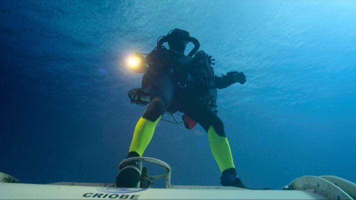 Perpetual Planet: Helden der Ozeane
