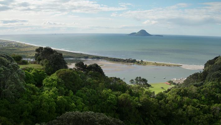 Bay of Plenty: Schönheit & Tradition