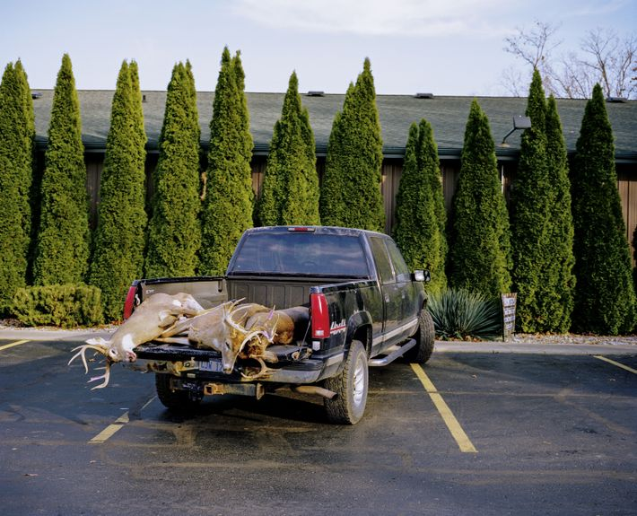 Jäger mit Weißwedelhirschen in Jerome, Michigan
