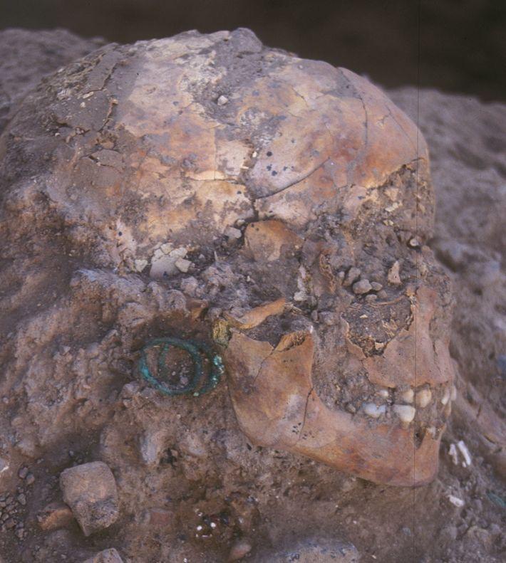 Vor etwa 3.800 Jahren wurde ein junges Mädchen bestattet, das mit Bronzeschmuck und ägyptischen Skarabäen ausgestattet ...