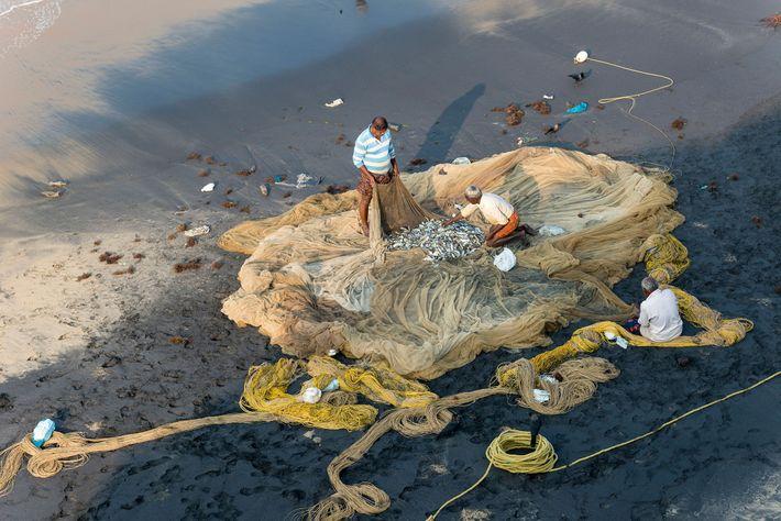 In Varkala im indischen Bundesstaat Kerala prüfen Fischer ihre Netze.