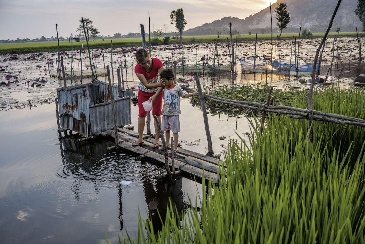 Ein Teich in Vinh Xuyen, im Süden von Vietnam