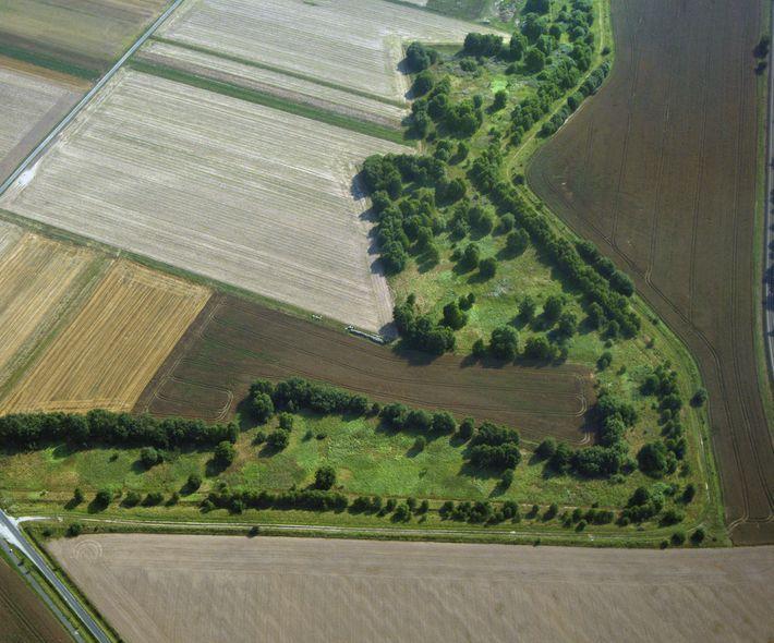 Wenn die Natur verbindet, was der Todesstreifen trennte - das Grüne Band vereint Naturschutz und Deutsche ...