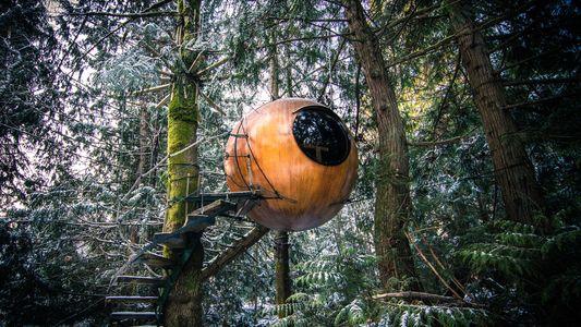 9 Baumhäuser, in denen man übernachten kann