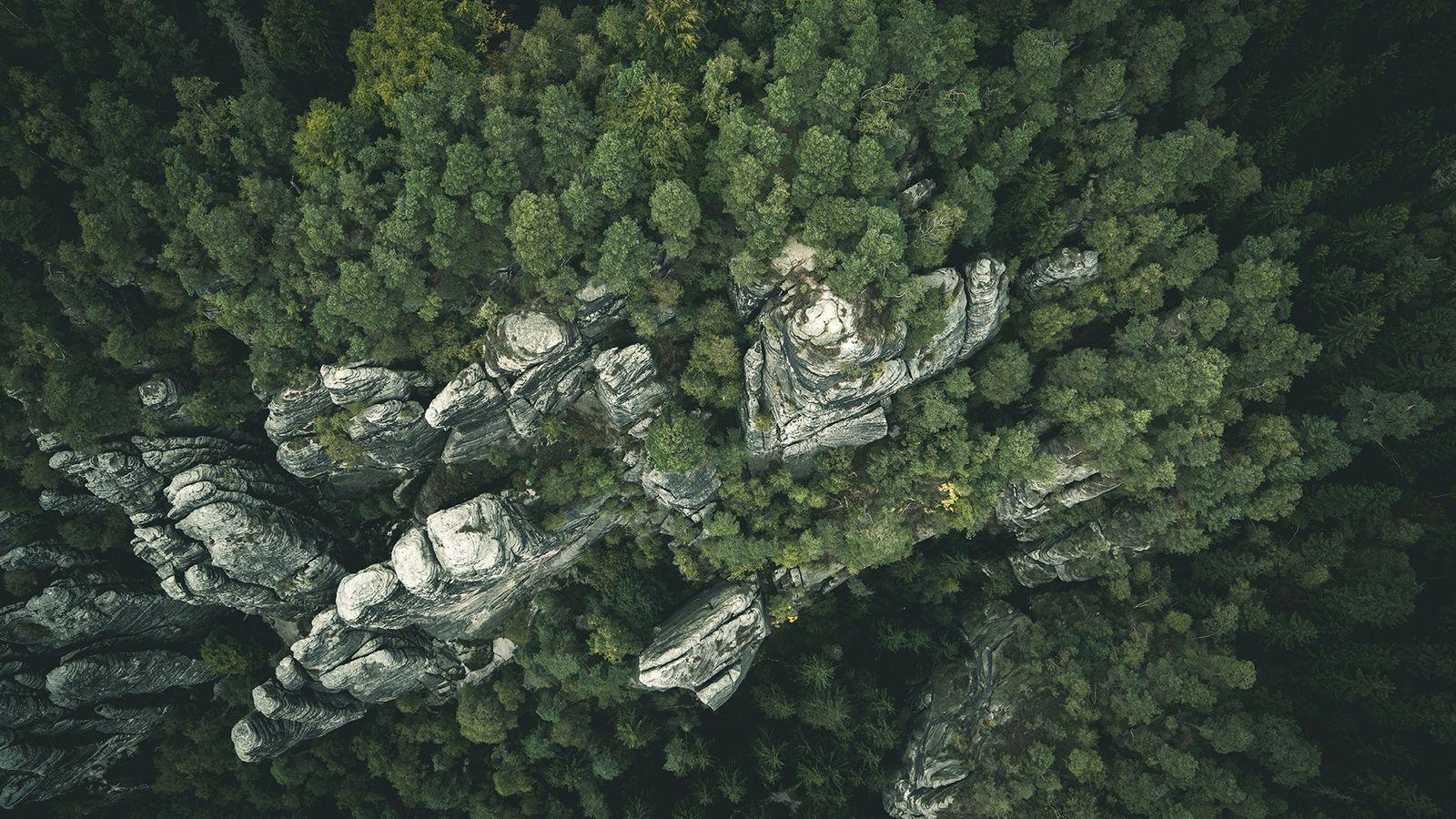 Die Sandsteinfelsen der Sächsischen Schweiz