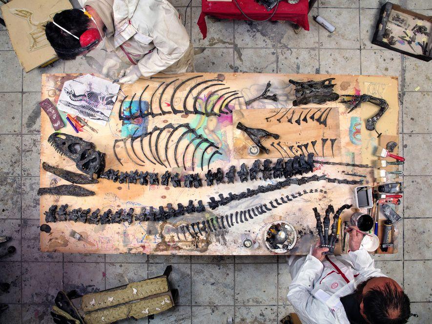 Die Firma Zoic im italienischen Triest ist auf das Restaurieren von Fossilien spezialisiert. Hier setzen Mitarbeiter ...