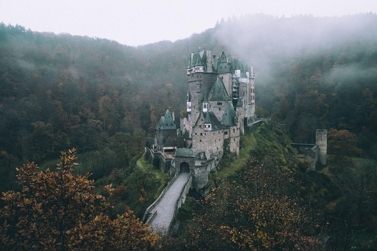 Wildnis vor der Haustür: Zwischen Burgen und Blüten der Eifel