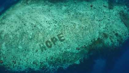 Video von National Geographic