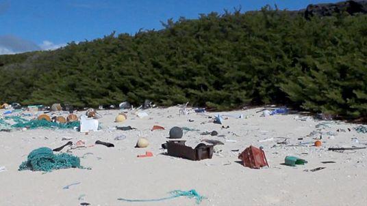 Auf dieser abgelegenen Insel wurden 38 Millionen Teile Plastikmüll angespült