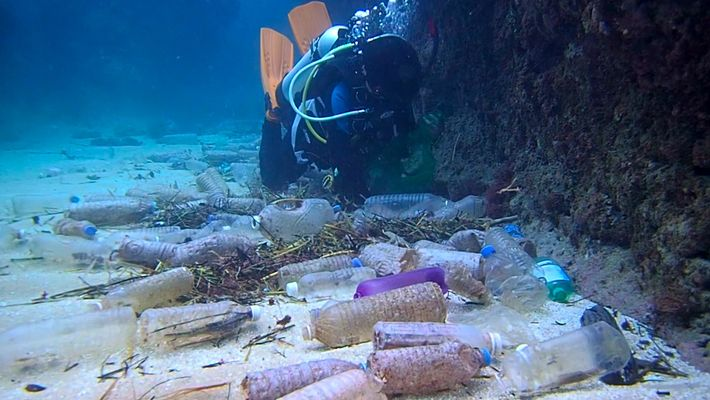 So viel Plastikmüll verschmutzt unseren Planeten