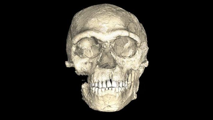 Sind dies die ältesten Fossilien moderner Menschen, die je gefunden wurden?