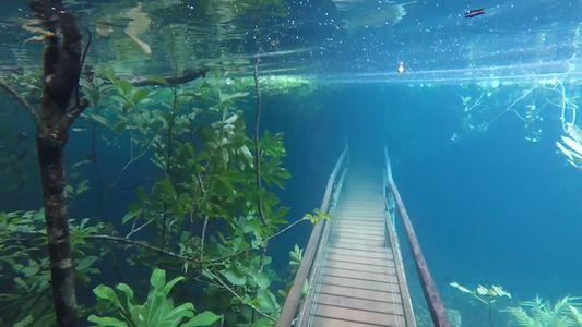 Regenfälle verwandeln Wanderwege in Unterwasserwelt