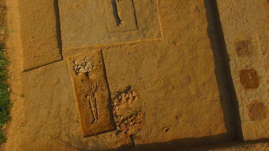 Friedhof der alten Indus-Kultur ausgegraben