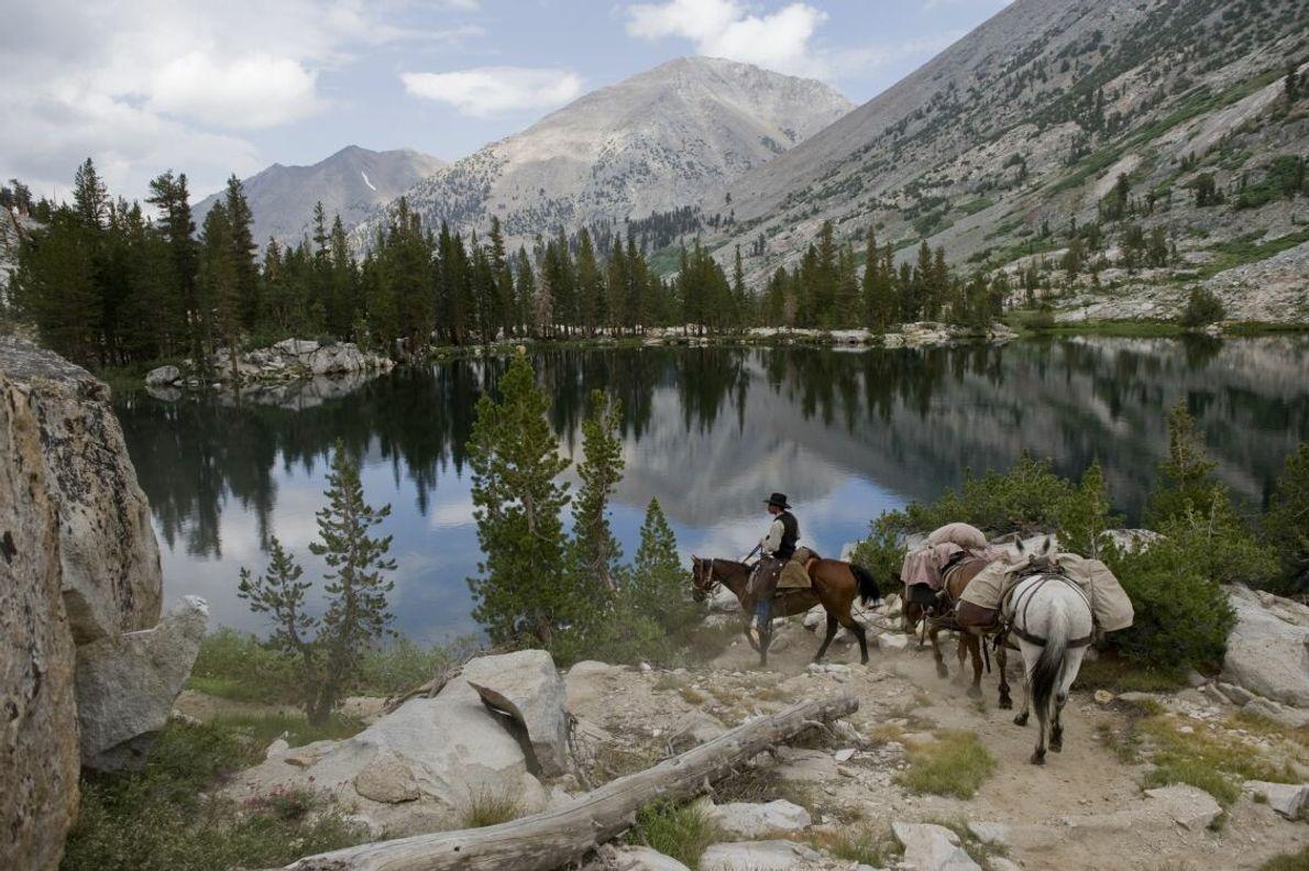 Ein Reiter streift mit seinen Gepäckpferden im Sixty Lake Basin in Kalifornien.