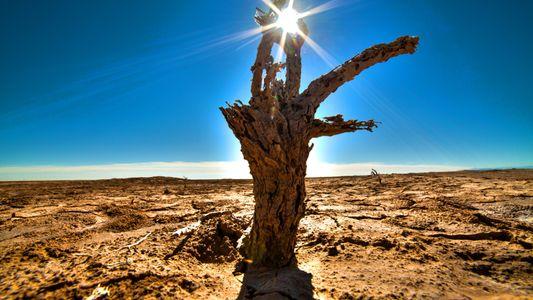 Abschluss der Weltklimakonferenz: Wohin steuert unser Planet?