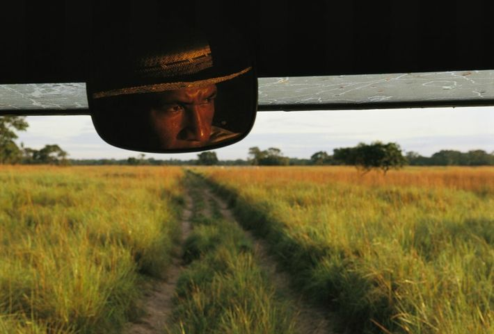 Auf diesem im Pantanal, Brasilien, aufgenommenen Foto wird das Gesicht eines Wildhüters im Rückspiegel perfekt gerahmt. ...