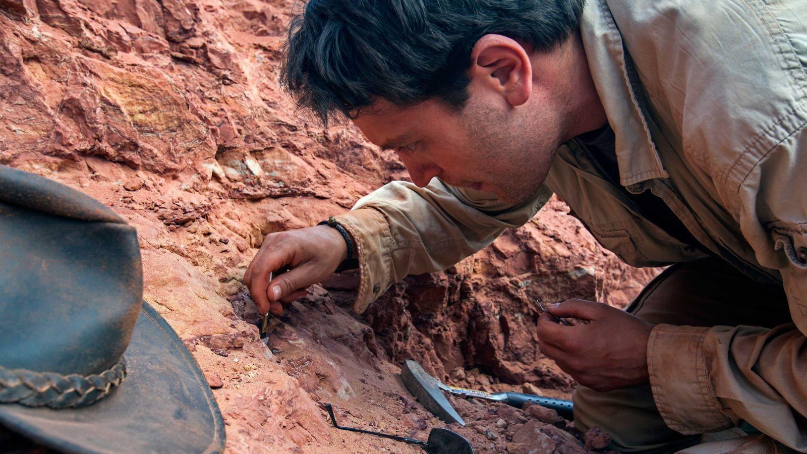 Paläontologe Nizar Ibrahim