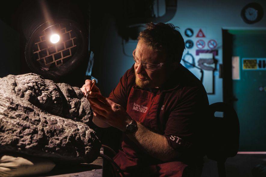 Vorsichtig befreit Mark Mitchell vom Royal Tyrrell Museum die Hand des Nodosauriers vom Gestein.