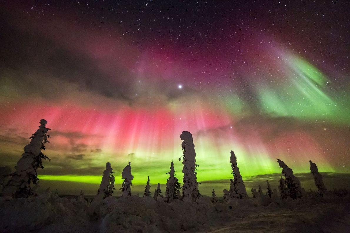 Oben am Himmel | Der Dalton Highway verläuft auf 666 Kilometern durch die Wildnis Alaskas. Am ...