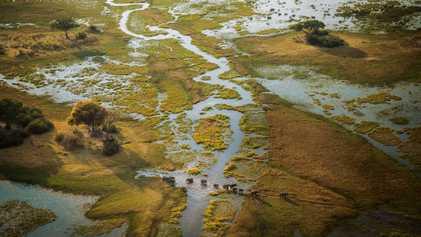Eine Rettungsmission für das Okavangodelta