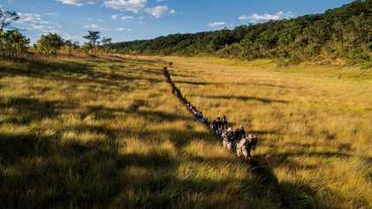 Galerie: Eine Rettungsmission für das Okavangodelta
