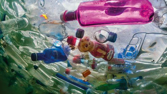 Plastikflaschen im Wasser, Kunstaktion