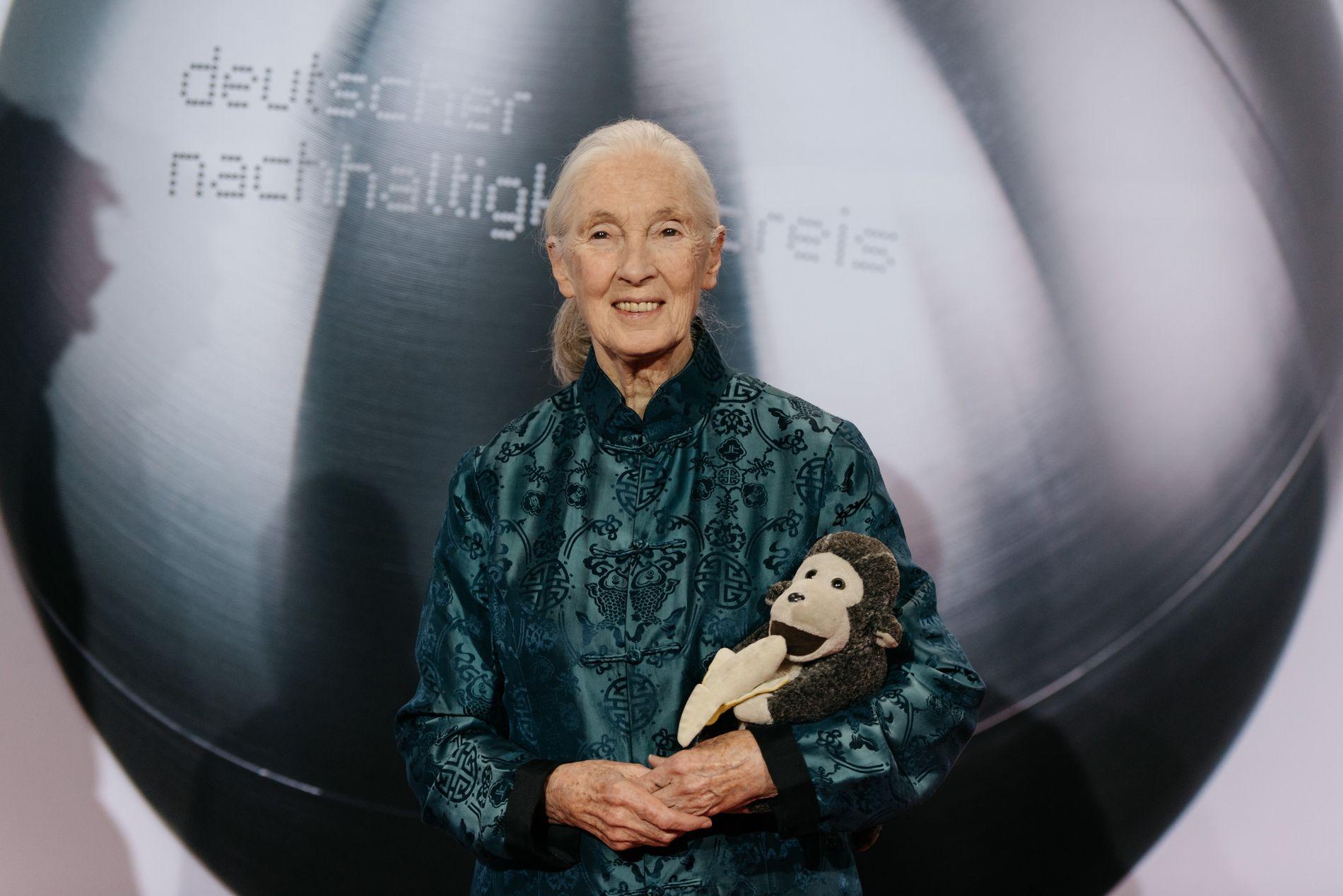 Jane Goodall, Deutscher Nachhaltigkeitspreis 2017