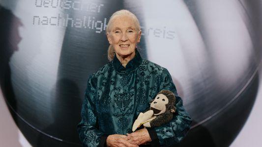 Jane Goodall: Armutsbekämpfung ist der Schlüssel zum Artenschutz