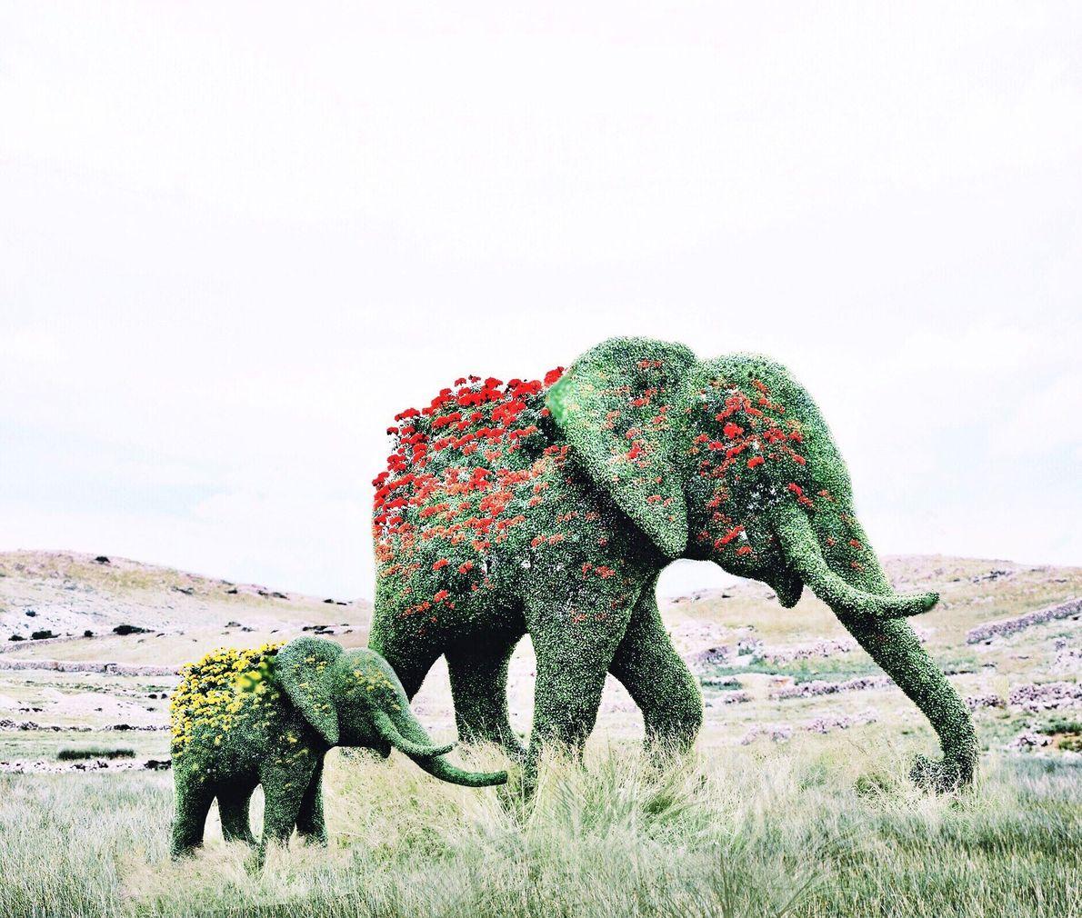 Elefanten mit Blumen