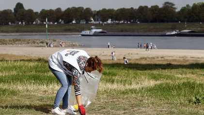 Fast 100 Tonnen Müll bei großer Rhein-Säuberung gesammelt