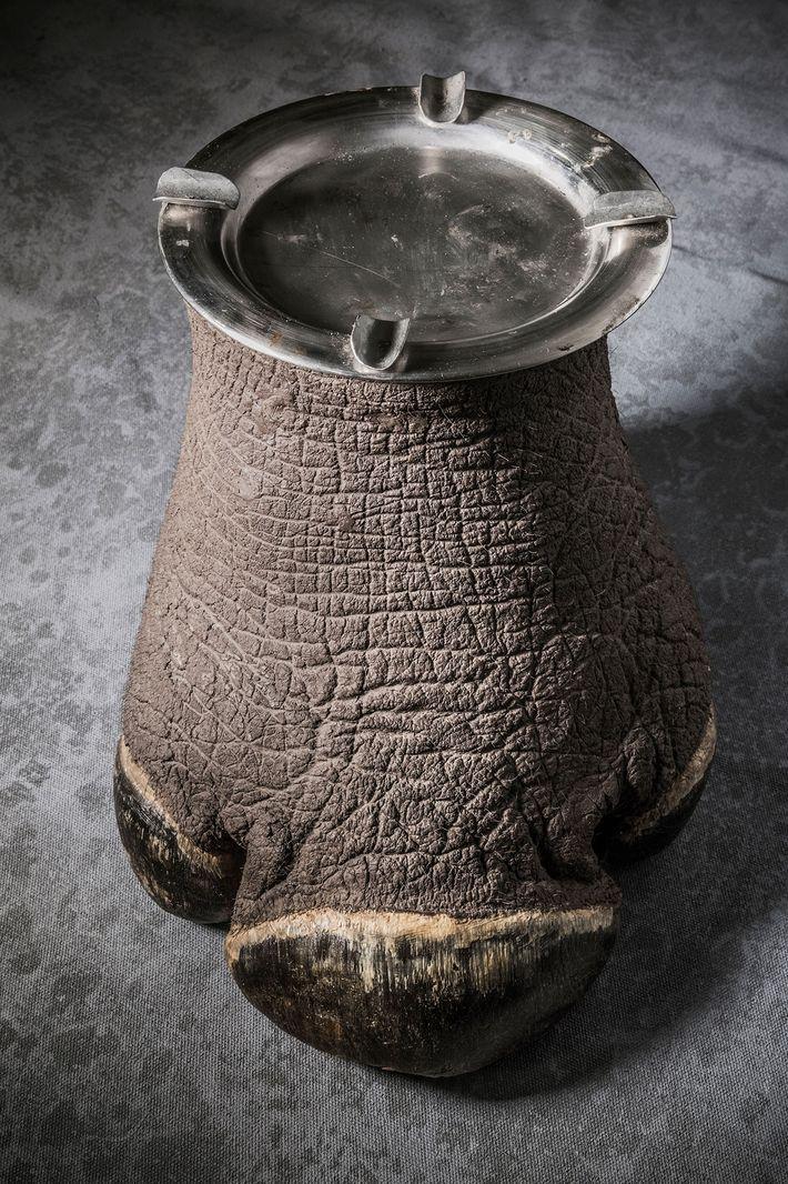 Nashorn-Aschenbecher