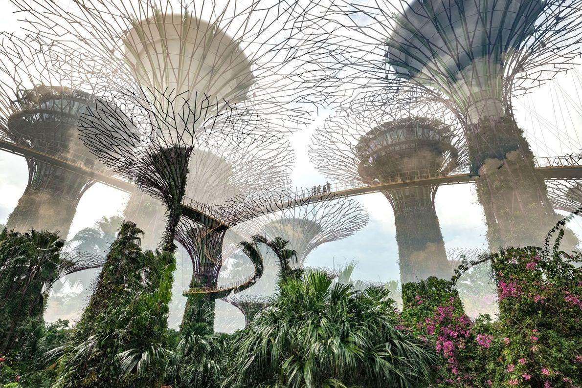 Nicolas Ruel Cityscapes Singapur