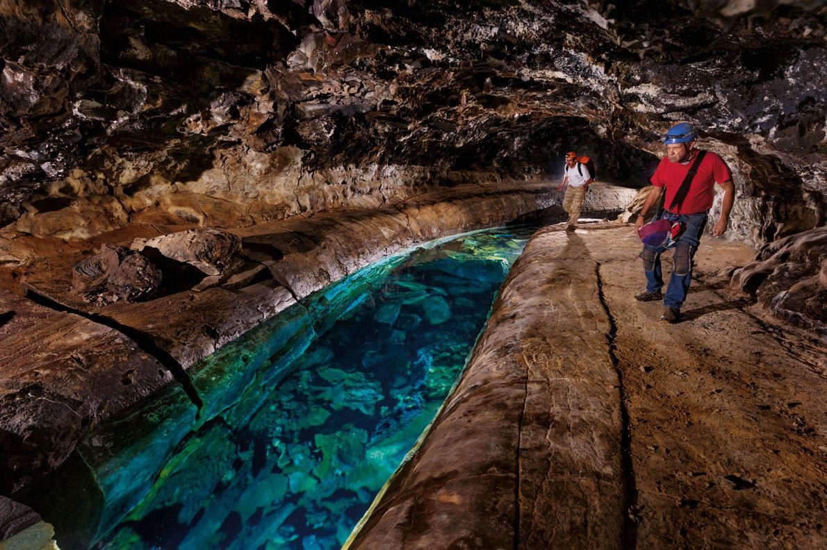 In den Höhlen Hawaiis sind größere Süßwasservorkommen selten. Die unterirdischen Flüsse mögen einladend aussehen, sind aber ...