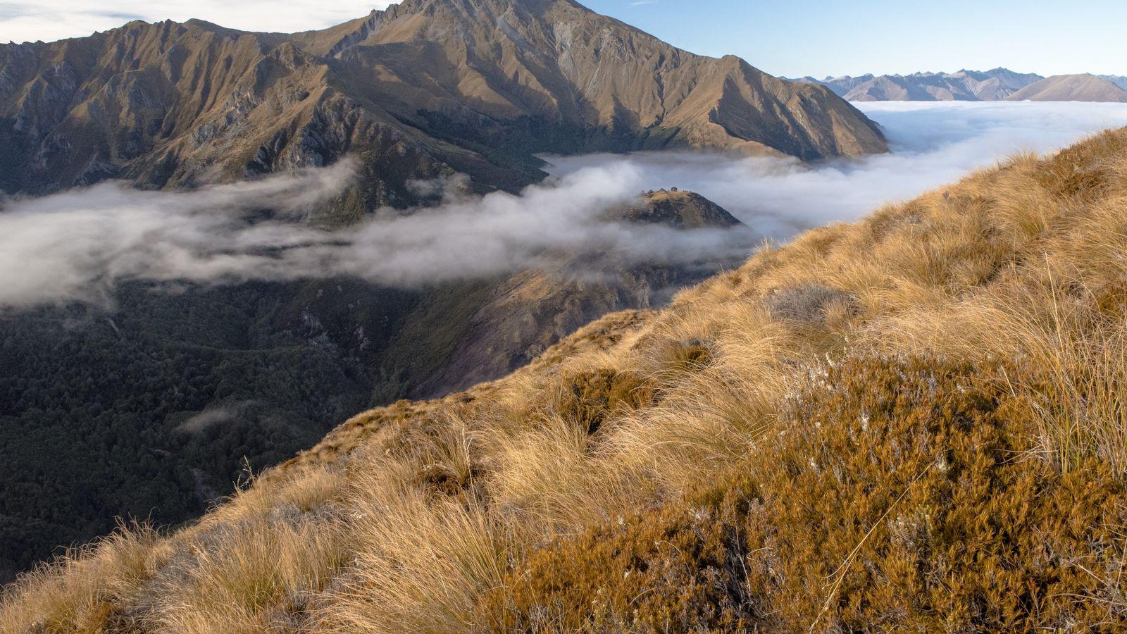 Die Morgensonne bringt die zerklüftete Landschaft um den Mount Crichton zum Leuchten. Unterhalb der Wolkendecke liegt ...