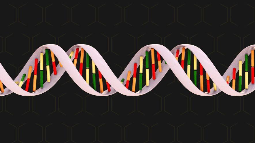 Wissen kompakt: Genetik