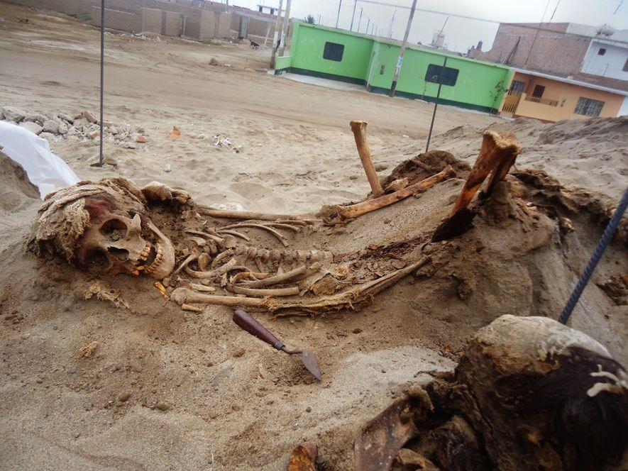 Anwohner machten den Archäologen Gabriel Prieto 2011 auf die Opferstätte aufmerksam, als durch Erosion menschliche Knochen ...