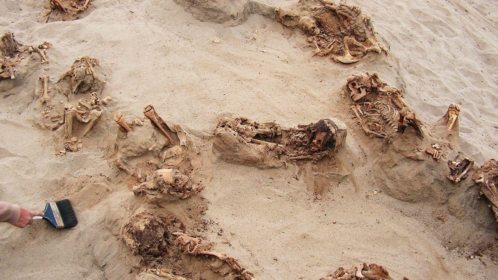 Im Laufe eines einzigen Tages legten Archäologen mehr als ein Dutzend Kinder frei, die über 500 ...