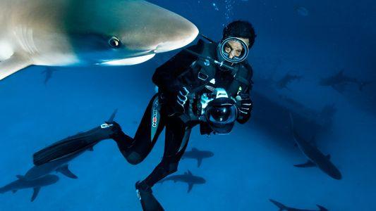 Rolex und National Geographic werden Partner in einer wichtigen Mission