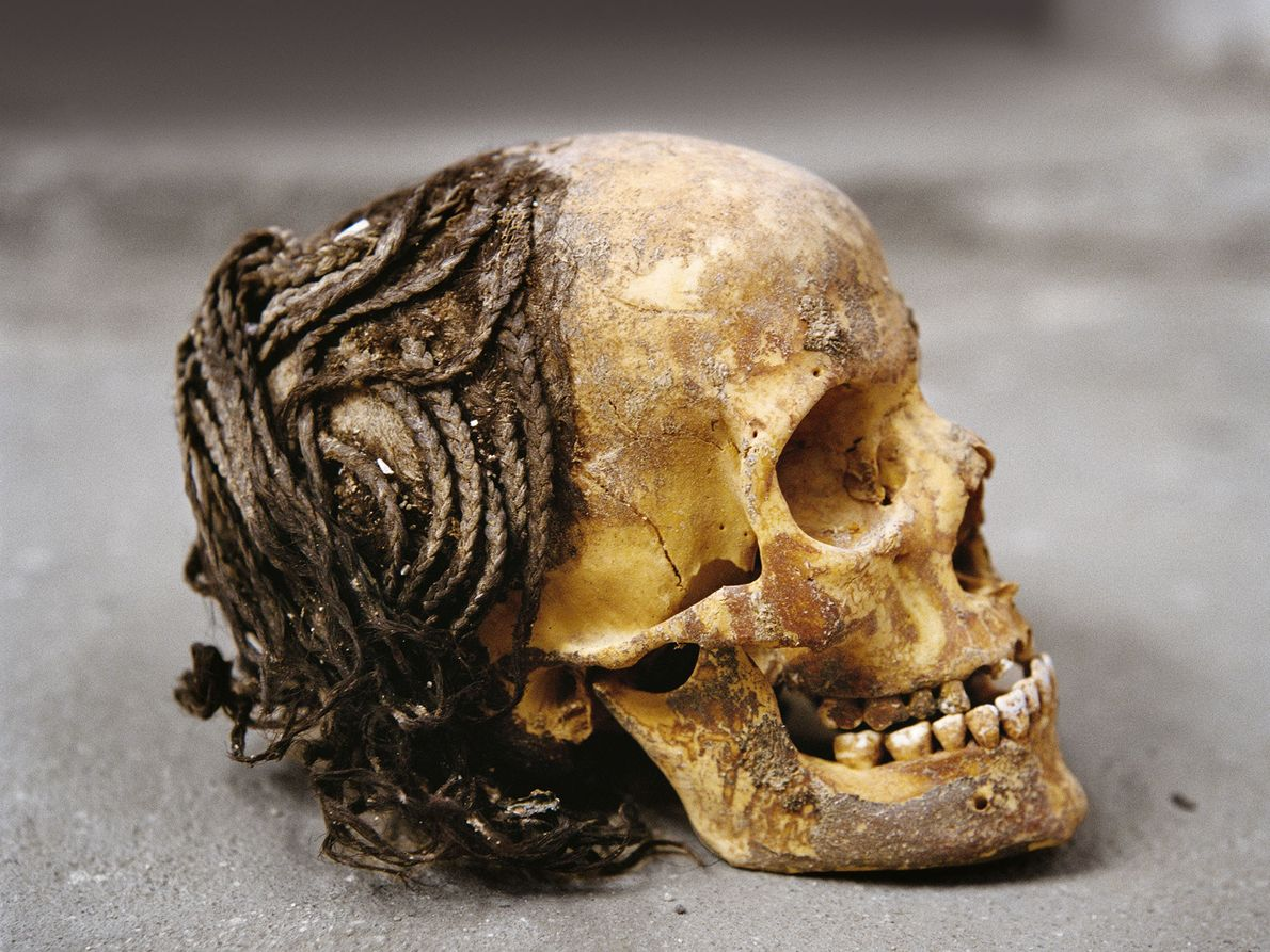 Einfache Menschen wurden im Wüstenboden begraben. Die komplizierten Haargeflechte auf einem Schädel zeigen die Sorgfalt, die ...