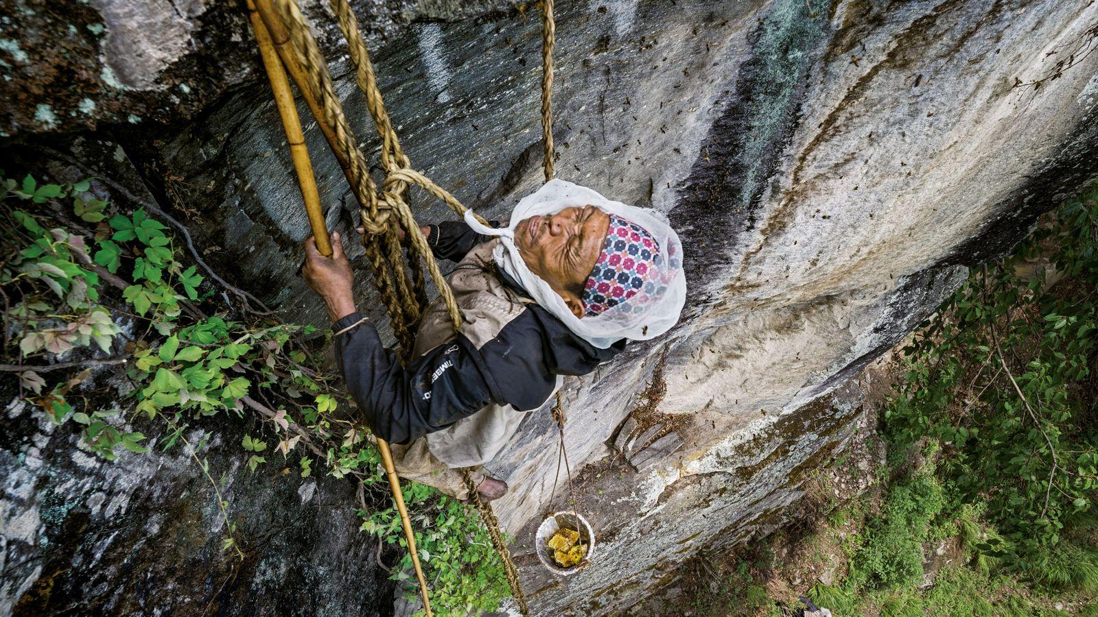 Der letzte Honigjäger von Nepal