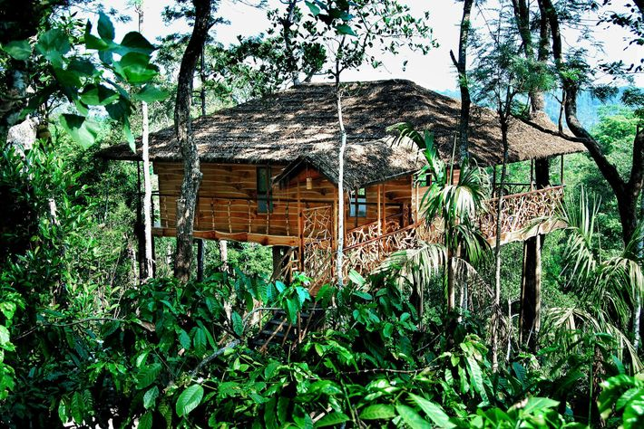 Tranquil Resort in Kerala, Indien