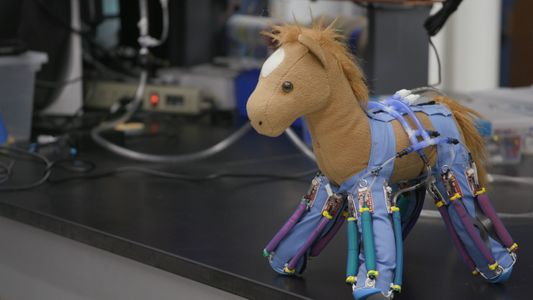 """Elektrohaut"" macht aus normalen Gegenständen Roboter"