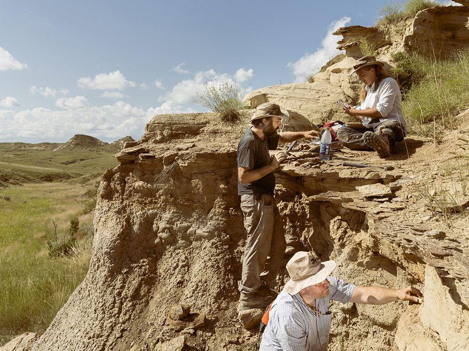 Galerie   Bone Wars – der Krieg um Dinosaurierknochen