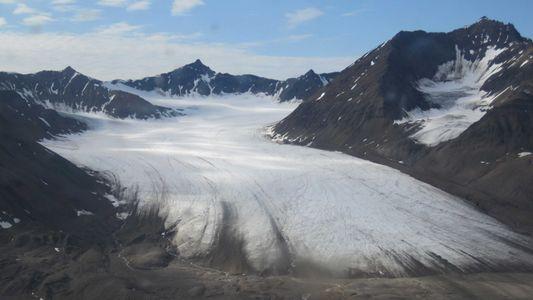 Galerie: Wie Schnee- und Eisalgen die Gletscher schmelzen lassen